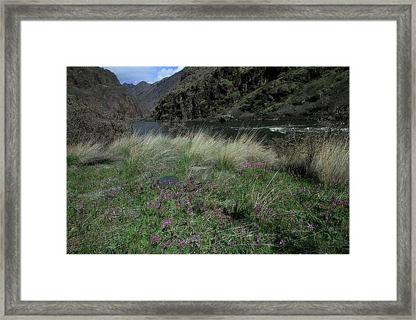 Hells Canyon National Recreation Area Framed Print