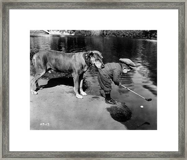 Helpful Dog Framed Print by General Photographic Agency