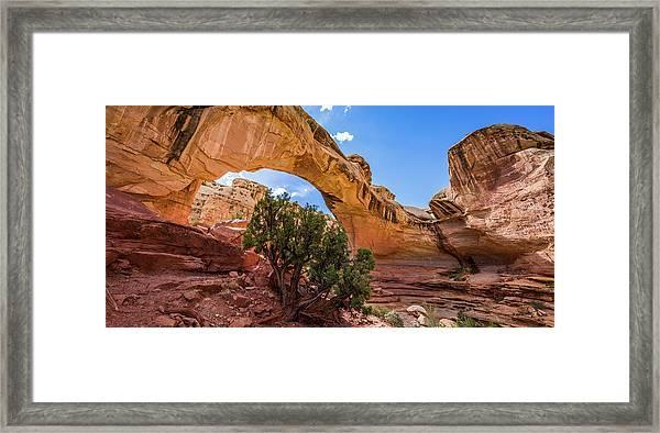 Hickman Natural Bridge Framed Print