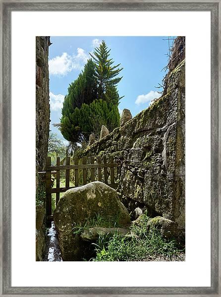 Hidden Details Of Bainte Framed Print