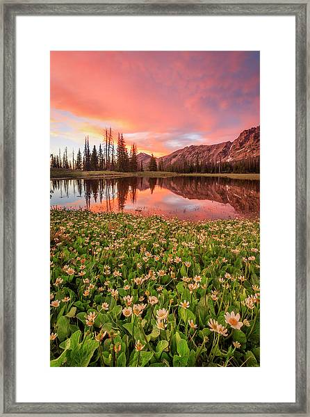 Highline Vertical Sunset Framed Print