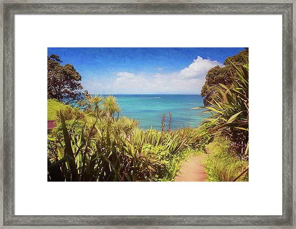 Hiking On Tiritiri Matangi New Zealand Painterly Framed Print
