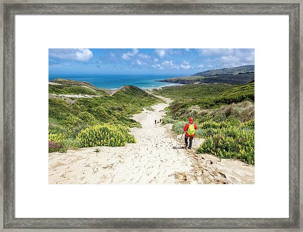 Hiking To Sandfly Bay New Zealand Framed Print