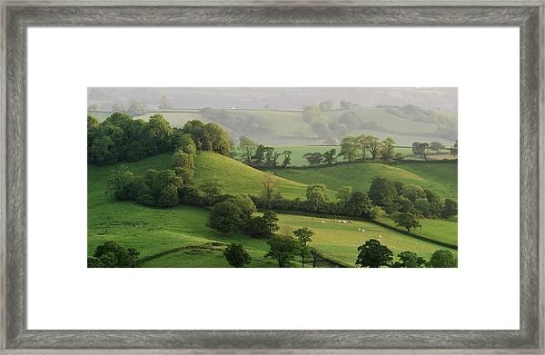 Hills Framed Print by Lewis Gillingham