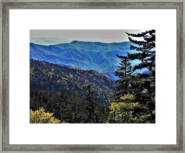Hint Of Autumn Framed Print