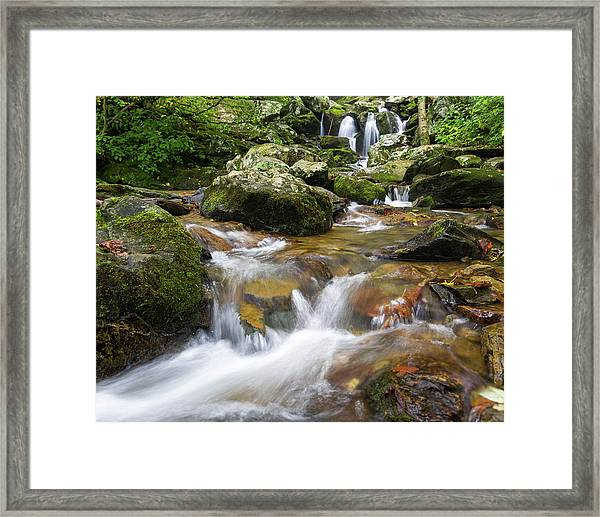 Framed Print featuring the photograph Hogcamp Branch Falls I by William Dickman