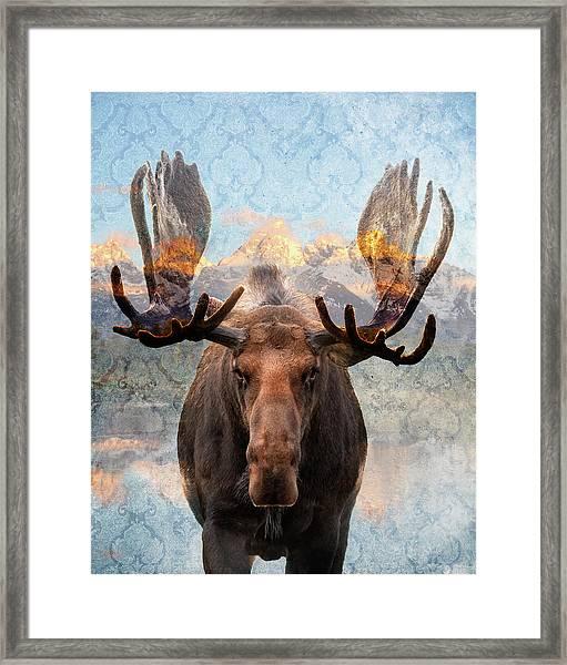 Hometown Moose Framed Print