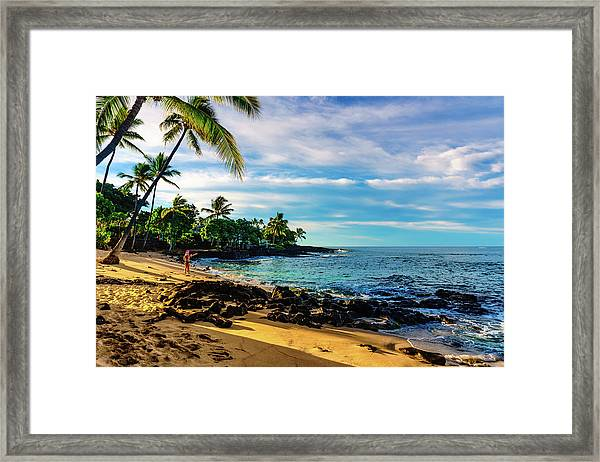 Honl Beach Framed Print