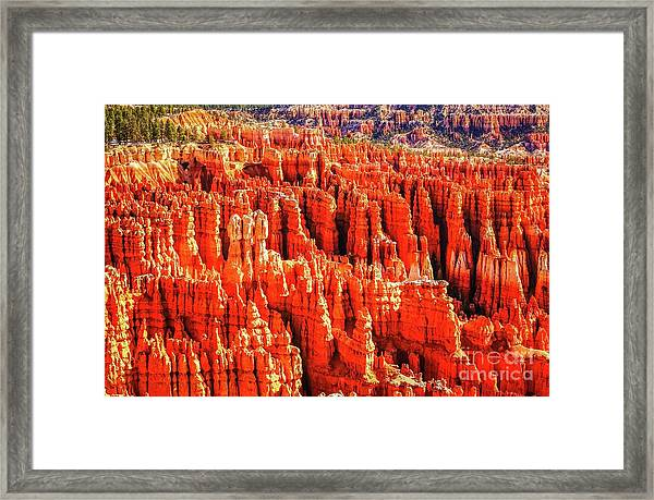 Hoodoos In Bryce Canyon Framed Print by Bob Lentz