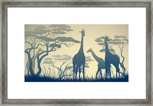 Horizontal Vector Illustration Of Wild Framed Print