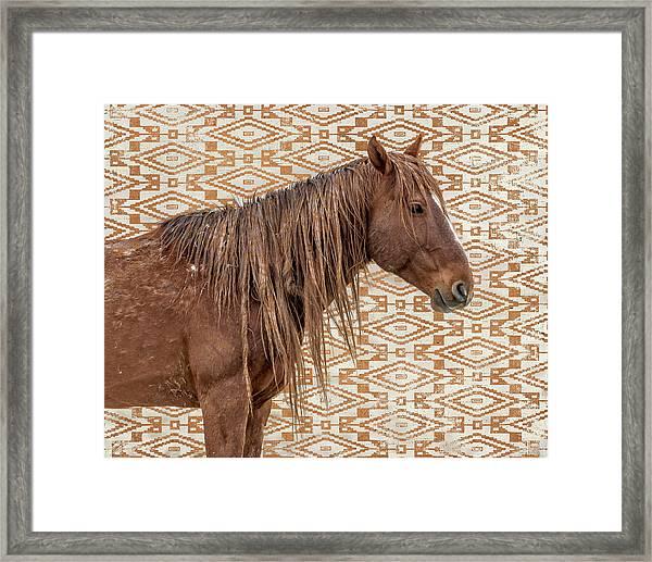 Horse Blanket Framed Print