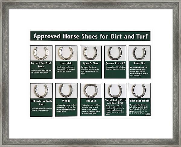 Horseshoes Framed Print