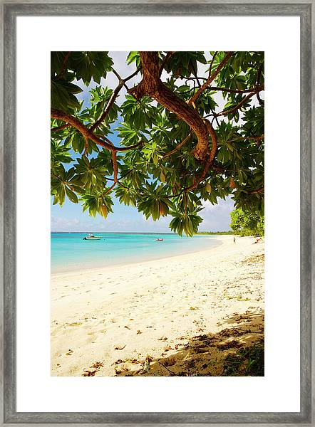 Houmaleeia Beach Framed Print by Oliver Strewe