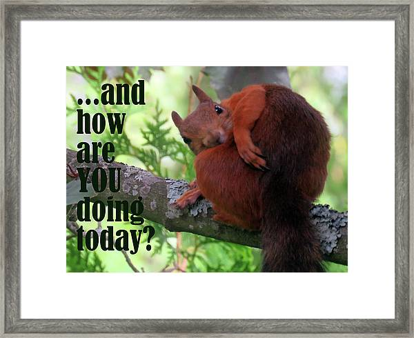 How Are You Doing Today Framed Print