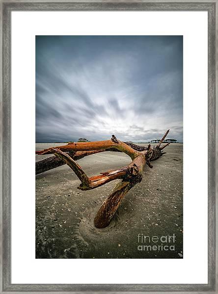 Hurricane Florence Beach Log - Portrait Framed Print