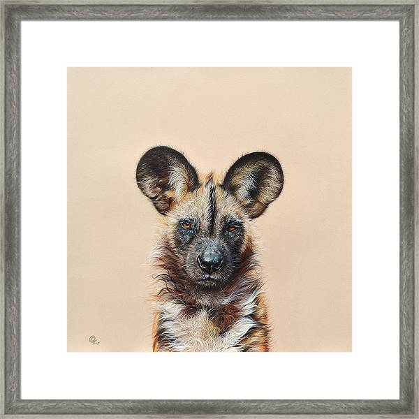 I Am A Wild Thing - African Painted Dog Framed Print