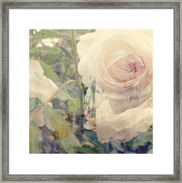 I Can't Stop Loving You  Framed Print
