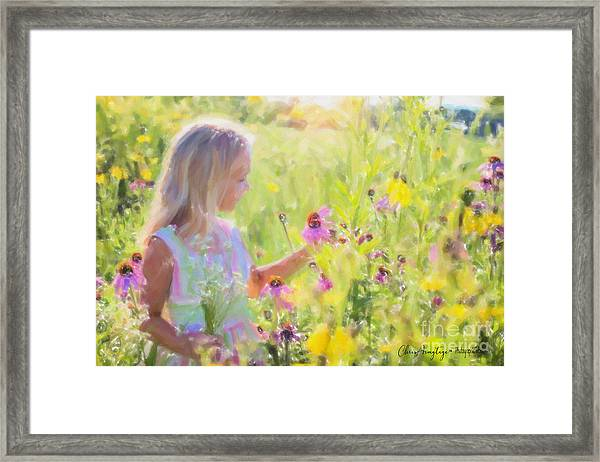 I Would Pick More Daisies ... Framed Print