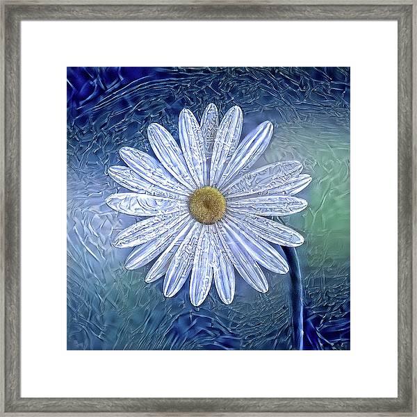 Ice Daisy Flower Framed Print
