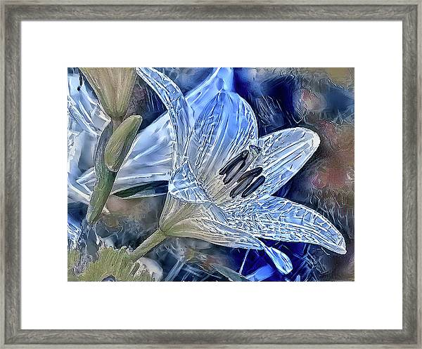 Ice Lily Framed Print