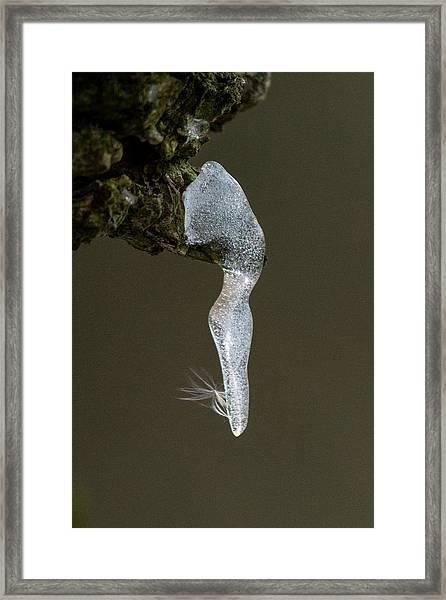 Ice Dancer Framed Print
