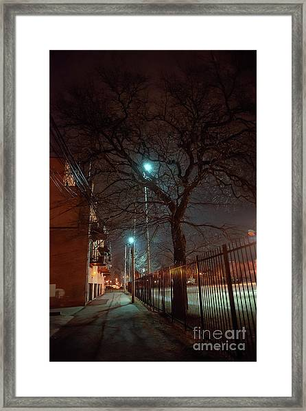 If Trees Could Talk Framed Print