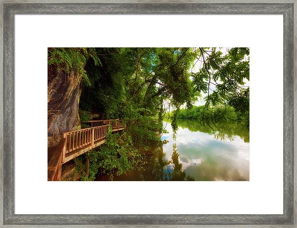 Framed Print featuring the photograph Ijam Nature Park Boardwalk Along The Tennessee River by Dee Browning