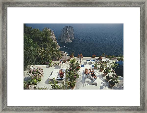 Il Canille Framed Print