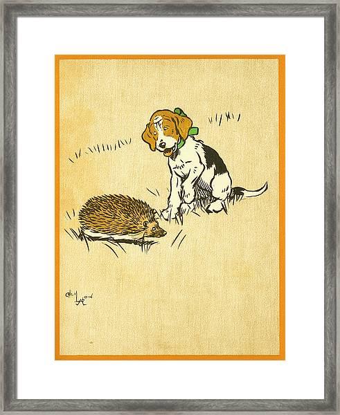 Puppy And Hedgehog, Illustration Of Framed Print