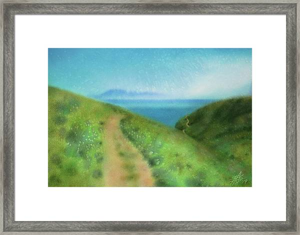 In Search Of Island Foxes Framed Print by Robin Street-Morris