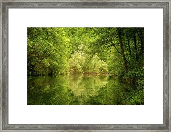 Framed Print featuring the photograph In The Heart Of Nature by Mirko Chessari