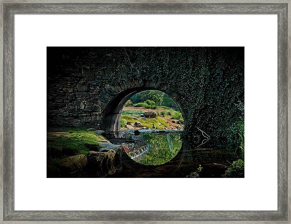 In The Middle Of A Reflection Framed Print