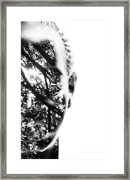 In Vision Framed Print
