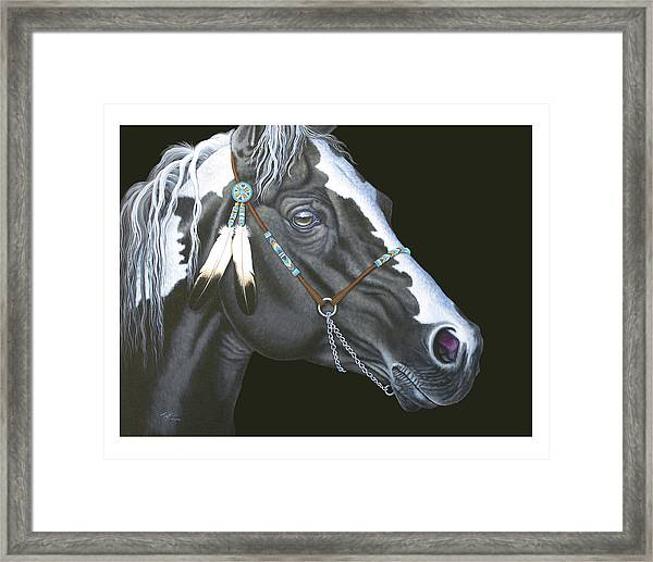 Indian Paint Horse Framed Print