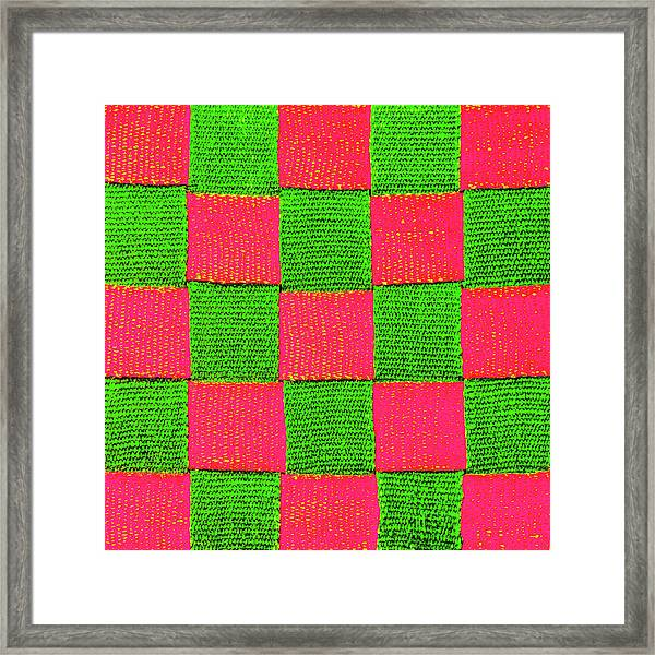 Interlaced Canvas Straps 2 Framed Print