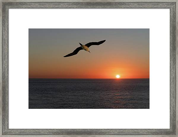 Framed Print featuring the photograph Into The Setting Sun by William Dickman