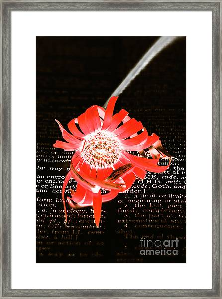 Inversion To The Mean Framed Print