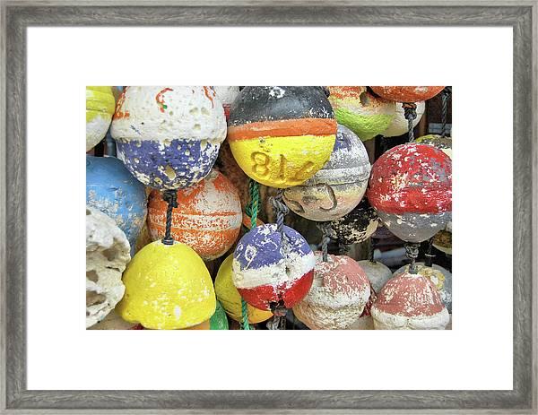 Island Buoys Framed Print