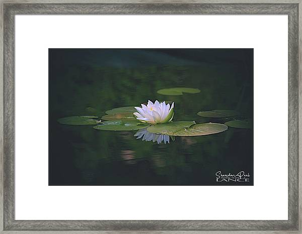 Its A Beauty Framed Print