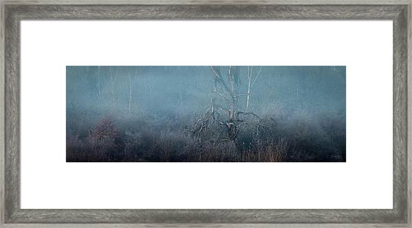 Jacob Framed Print