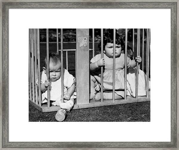 Jailbird Babies Framed Print