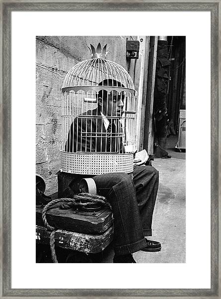 Jerry Lewis In A Cage Framed Print
