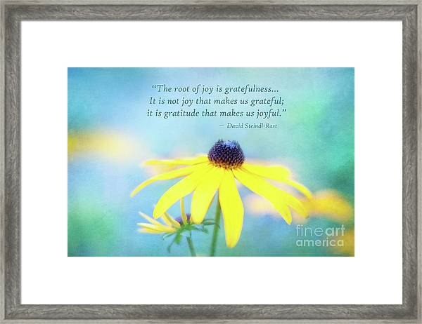 Joy And Gratefulness Framed Print
