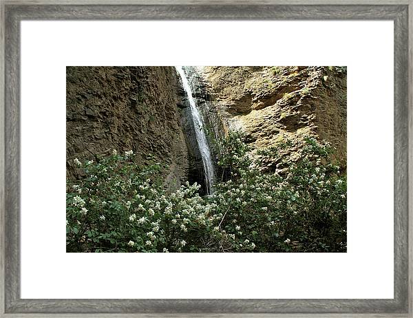 Jump Creek Falls Canyon Framed Print