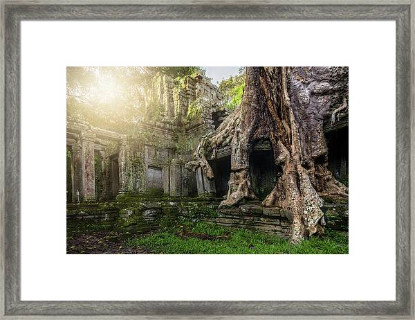 Framed Print featuring the photograph Jungle Temple 2 by Nicole Young