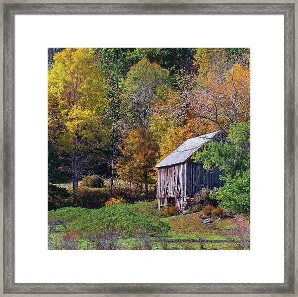 Kent Hollow II - Thom Schoeller Framed Print
