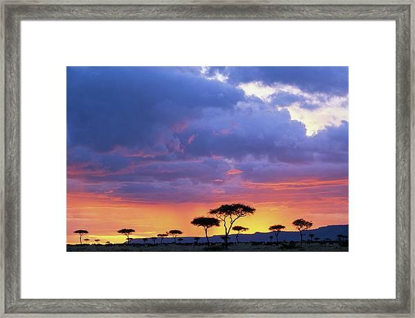 Kenya, Masai Mara Game Reserve, Storm Framed Print by Paul Souders