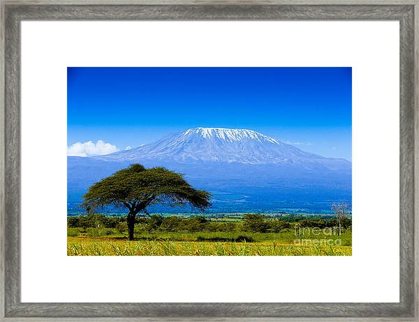Kilimanjaro On African Savannah Framed Print