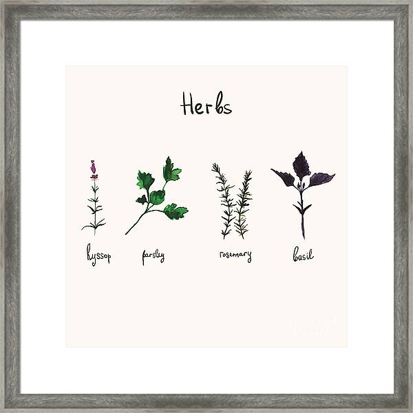 Kitchen Herbs. Watercolor Vector Framed Print