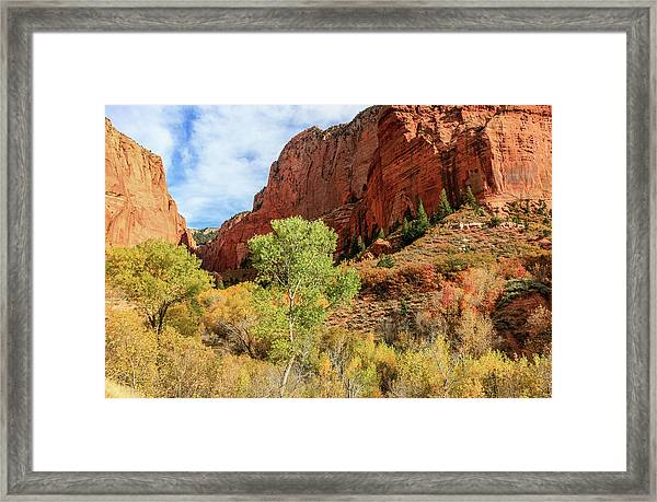 Framed Print featuring the photograph Kolob Canyon 1, Zion National Park by Dawn Richards